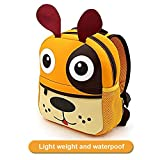 Best Books 4 Year Old Boys - Toddler Backpack for Boys and Girls, AOBETAK Cute Review