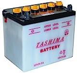 Tashima - Batería moto 12N24-3A 12V 24Ah - Batería(s)