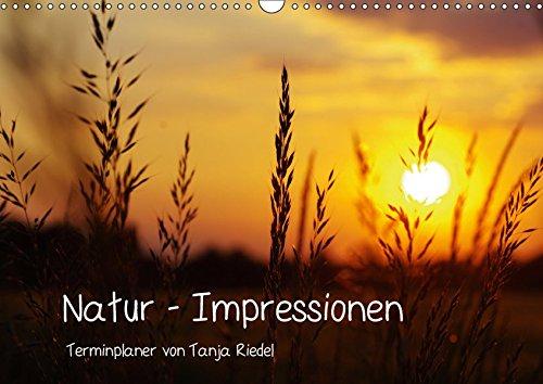 Natur - Impressionen Terminkalender von Tanja Riedel Schweizer KalendariumCH-Version (Wandkalender 2019 DIN A3 quer): Bilder zum Entspannen und ... 14 Seiten ) (CALVENDO Natur)