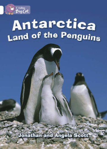 antarctica-land-of-the-penguins-band-10-white-collins-big-cat