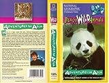 Adventures In Asia