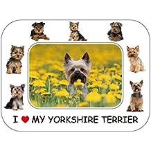 """Yorkshire Terrier Regalo–hermoso 8""""x 6"""" magnético marco de fotos/flexible imán para nevera"""