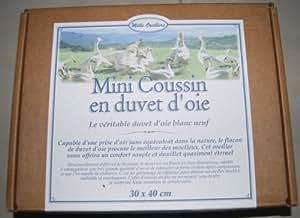 Petit Oreiller Bio en Duvet d'Oie souple 30x40cm