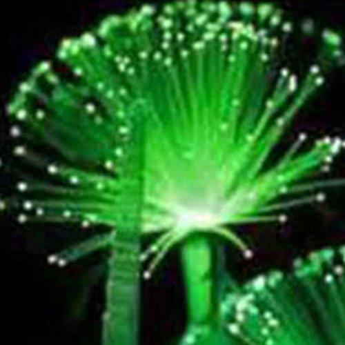 Ncient 20/50 semi sementi di piante che emette luce notturna fiore fluorescente emerald fluorescent flower seeds semi di fiori rari piante profumati per orto giardino balcone interni ed esterni