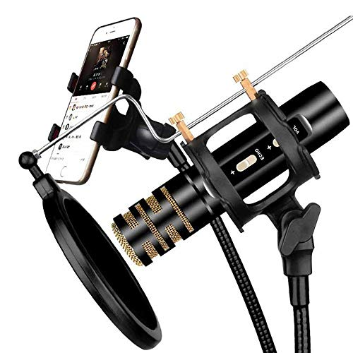 ischer Kreis nationales K-Lied singen Live-Broadcast-Host-Mikrofon-Reverb-Monitormikrofon (Farbe : Black+universal bracket) ()