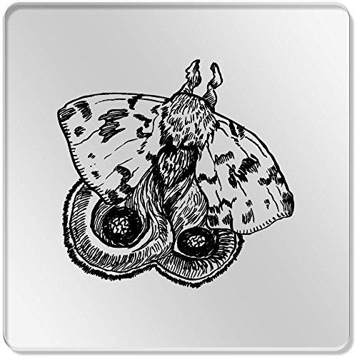 Motte Bar (6 x 'Motte' Klar Untersetzer (CR00057401))