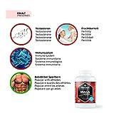 Maca Kapseln hochdosiert 4000 mg + L-Arginin 1800 mg + Vitamine + Zink, 240 Kapseln für 2 Monate, Qualitätsprodukt-Made-in-Germany jetzt zum Aktionspreis und 30 Tage kostenlose Rücknahme! 1er Pack (1 x 206,4 g) - 3