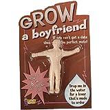 Cultivez un petit ami - Grow A Boyfriend