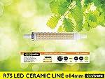 ECOBELLE® 1 x Bombilla LED R7S...
