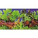 Hobby 31168 Fotorückwand-Zuschnitt Pflanzen 1 / 5