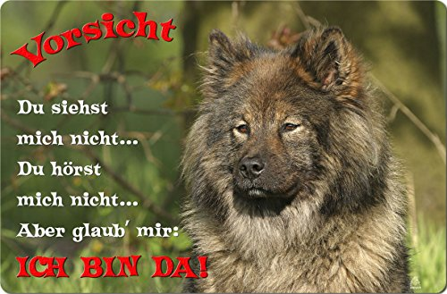 +++ EURASIER - Metall WARNSCHILD Schild Hundeschild Sign - EUR 04 T2