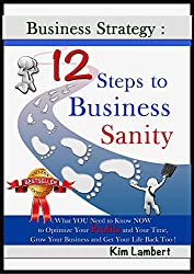 Business Strategy: 12 Steps to Business Sanity: What YOU Need to Know NOW to Optimize Your Profits and Your Time, Grow Your Business and Get Your Life ... (Business Sanity Series) (English Edition)