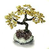 Astro Gallery Of Gems Medium Citrin Edelstein Baum auf Amethyst Matrix