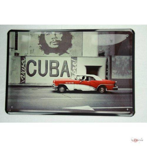 Blechschild Viva Cuba libre und Che Guevara 20 x 30 cm tin sign enseignes en metál Metallschild Retro Werbung Blechschilder