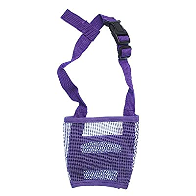 RayLineDo® Dog Mouth Muzzle Breathable Nylon Mesh Adjustable Biting Chewing Prevention Safety Belt Soft Pet Anti Barking Muzzles for Small Medium Large Dogs Size M In Purple by RayLineDo