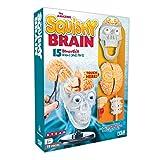 The Amazing Squishy Brain
