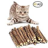 Umiwe Catnip Matatabi,40 Palitos De Hierba Gatera De Matatabi para Gatos Natural Cuidado Dental Chew Catnip Sticks para Gatitos Dientes Diámetro (40 Palitos)
