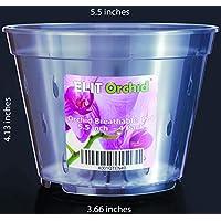 Juego de ollas para orquídeas con orificios para plátanos de plástico transparente para interior y exterior, diseño de Vanda4 ollas 140 mm Dia.