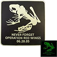Glow Dark GITD Operation Red Wings Night Stalkers PVC 3D Gomma Velcro Toppa Patch