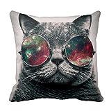 Gato YUIEND con gafas de sol funda de almohada manta de cojines de la funda de almohada Funda de cojín 18 x 18