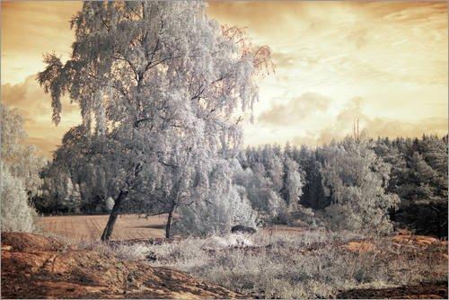 Holzbild 30 x 20 cm: Landschaft im Infrarot-Filter von Editors Choice