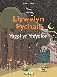 Llywelyn Fychan: Ysgol yr Ynfydion