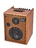 One for Street Wood Akku-Amp