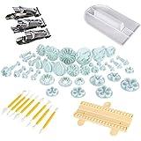 LIHAO Conjunto de Herramientas de Molde de la Tarta para Decorar los Pasteles (10 surtidos de 46 Pcs + pulidor + pinzas metales + accesorios )