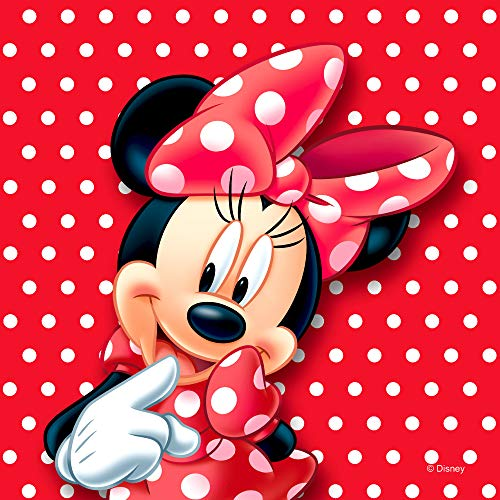 AG Design Minnie Mouse Disney, dekorative Kissen, 40 x 40 cm, Mehrfarbig