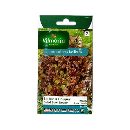 Vilmorin - Sachet graines Laitue à couper Salad Bowl Rouge