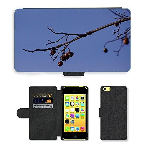 Just Mobile pour Hot Style Téléphone portable étui portefeuille en cuir PU avec fente pour carte//m00139984branche oiseau alimentaire feuilles Old Baies//Apple iPhone 5C