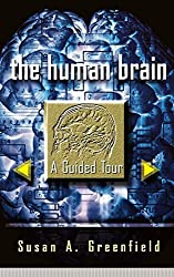 The Human Brain: A Guided Tour (Science Masters Series) by Susan A. Greenfield (1998-10-02)