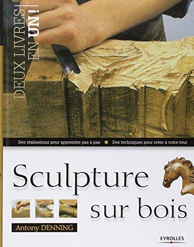 Sculpture sur bois: Des ralisations pour apprendre pas  pas. Des techniques pour crer  votre tour