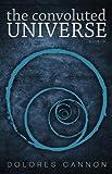 Convoluted Universe: Book Four: 4