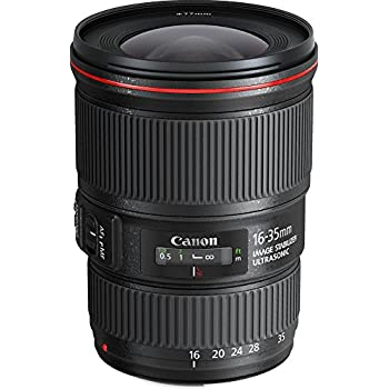 Canon EF 16-35mm f/4L IS USM - Objetivo para Canon (diámetro: 77 mm), negro