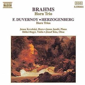 Trio for Violin, Horn and Piano in E flat major, Op. 40: III. Adagio mesto
