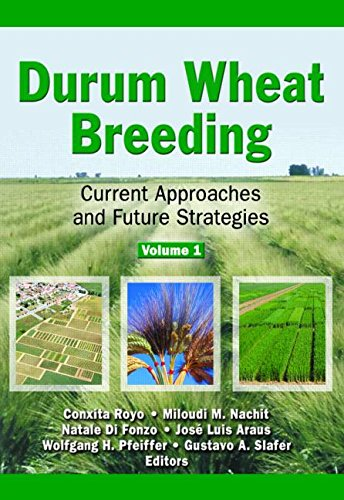 Durum Wheat Breeding: Current Approaches and Future Strategies
