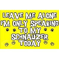 Déjame en paz sólo voy a hablar con mi perro Schnauzer hoy - Jumbo imán regalo/regalo