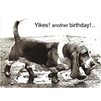 Basset Hound Yikes! Another Birthday Card Greeting Card