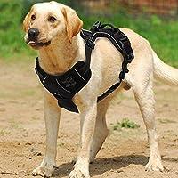 [Gesponsert]Funkeen® No-Pull Hundegeschirr einstellbar weich Brustgeschirr einfach sicher Kontrolle bequem für Hunde Haustier (XL, Schwarz)