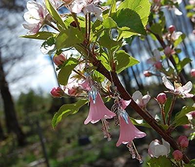 Boucles d'oreilles fleur rose et petits cristaux Swarovski/bijoux rose/tulipes/fleurs du printemps/féerique/romantique/elfique/Reine des Fées/mignon/kawaii/cadeaux pour filles