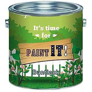 Paint IT! Buntlack hochwertigerKunstharzlack für Holz und Metall - Deck-Farbe Deck-LackLackfarbe Wetter- und Vergilbungsbeständig (1 L, Lichtgrau (RAL 7035))