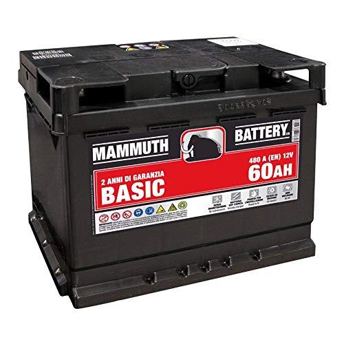 Batteria Auto 60AH 480A 242x175x190