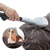 Oramics profesional para aspiradora el pelo de animal universal–Cepillo para aspiradora Incluye Adaptador de 2–Gatos y Perros Mascotas para tubos con aprox. 3–4cm de diámetro)