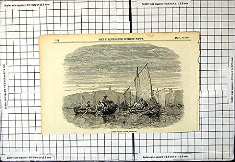 Old Print Lobster Fishing Drawn Duncan Sail Boats Piled Creels Men 301G618