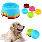 Vikenner Round Pet Dog Cat Plastic Bowl Durable Food Drink Feeder Bowl Candy Colors Feeding Dish Bowl(Blue) 16