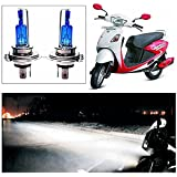 Cape Shoppers - Xenon Cyt White Headlight Bulbs for Hero Motocorp Maestro Scooty (Set of 2)
