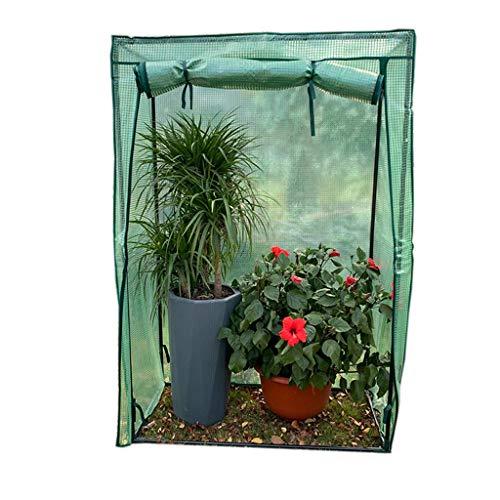Miniserre serra da giardino balcone piccola serra per interni - mini serra di plastica invernale per patio cortile giardino, 100 × 48 × 150 cm