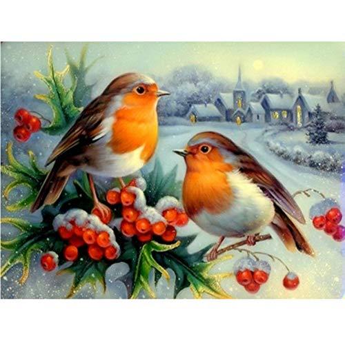 len Nach Zahlen Zwei Vogeltiere Im Winter Erwachsene Kinder Anfänger Handgemalte Zeichnung Leinwand Färbung DIY Kunstwerk Einzigartiges Deko-Geschenk Frameless 40X50Cm ()