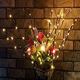 Confezione da 2ramo luci-76,2cm 20LED a batteria luci decorative Willow Twig Branch Tree Lights for home decorazioni di Natale bianco caldo